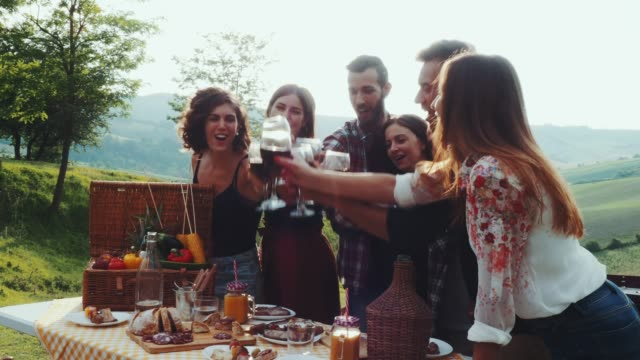friends making a toast during a barbecue - aperitivo video stock e b–roll