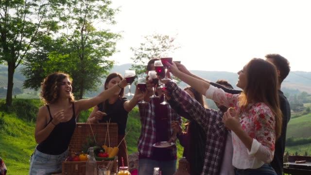 freunde machen einen toast beim grillen - moving image stock-videos und b-roll-filmmaterial
