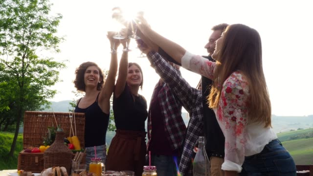 Friends making a toast during a barbecue