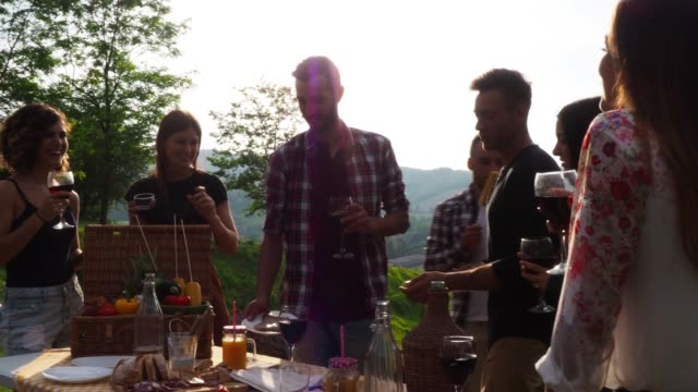 friends making an aperitif during a barbecue - social gathering stock videos & royalty-free footage