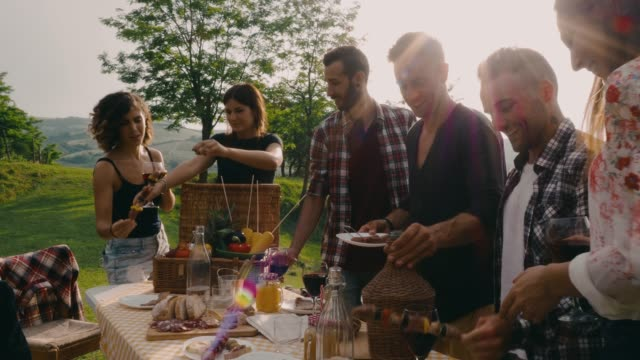 friends making an aperitif during a barbecue - public park stock videos & royalty-free footage