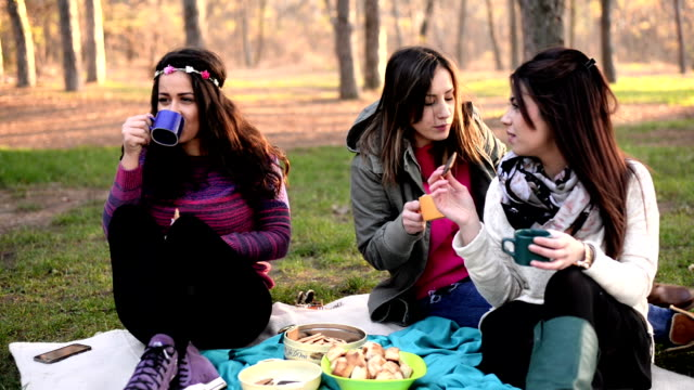 Friends on picnic