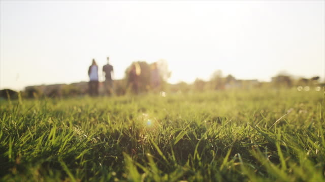 Friends playing soccer on a grass field