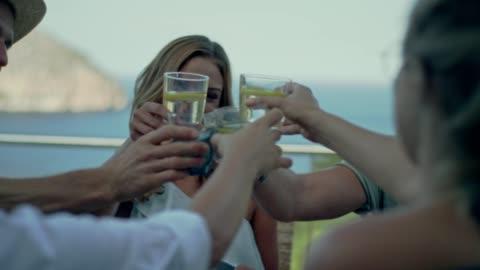 vídeos y material grabado en eventos de stock de proponer el brindis durante la cena de amigos - plato de comida