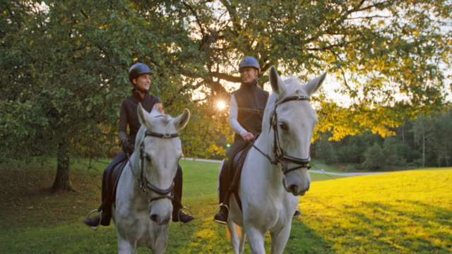 slo mo friends riding horses and chatting at sunset - recreational horseback riding stock videos & royalty-free footage
