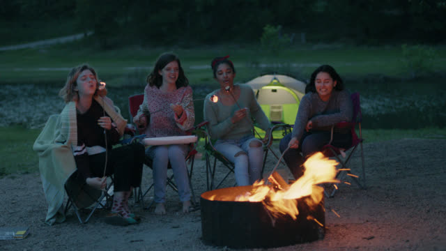 ws. friends roast marshmallows over fire on riverside camping trip. - ワイドショット点の映像素材/bロール