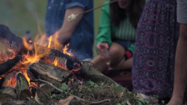 friends roasting marshmallows - ウィルトシャー州点の映像素材/bロール