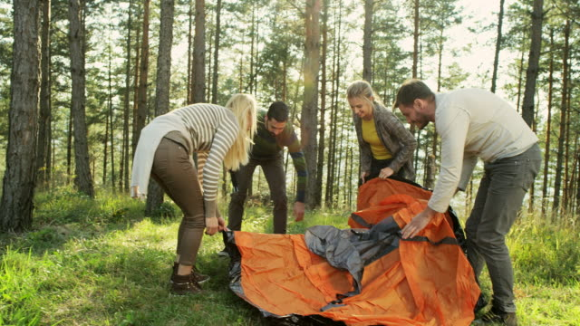 friends setting up tent - costruire video stock e b–roll