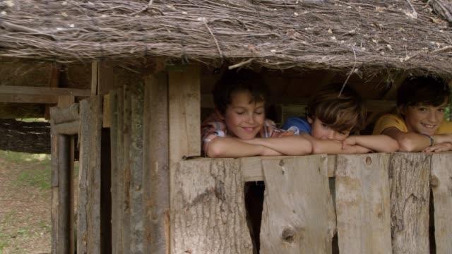 stockvideo's en b-roll-footage met vrienden die permanent in de boomhut op forest - armen over elkaar