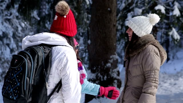 friends talking in amazing winter forest ambient - ski jacket stock videos and b-roll footage