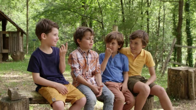 friends talking while sitting on log in forest - pre adolescent child stock videos & royalty-free footage