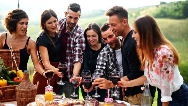 friends toasting all together on a bbq - italian culture stock videos & royalty-free footage