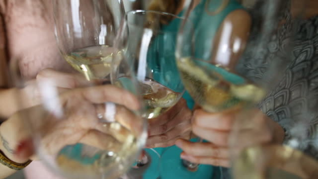 friends toasting with champagne glasses - white wine stock videos & royalty-free footage