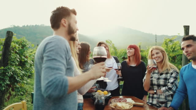 friends together enjoy meal and red wine in italy - tuscany stock videos & royalty-free footage