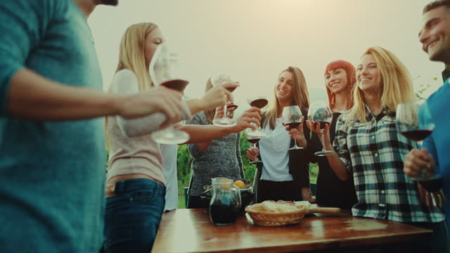 friends together enjoy meal and red wine in italy - wine stock videos & royalty-free footage
