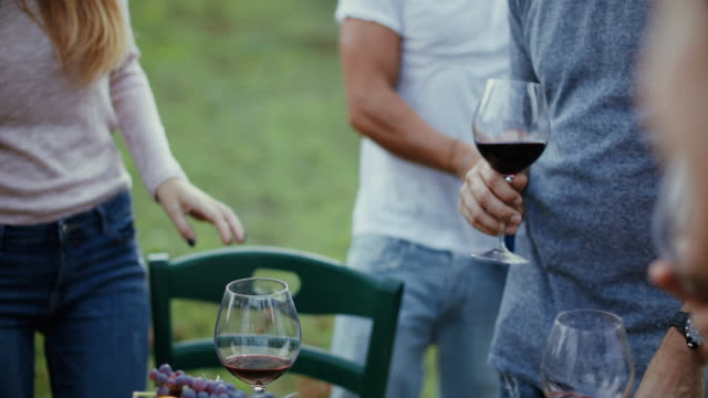 friends together enjoy meal and red wine: up the glasses - tuscany stock videos & royalty-free footage