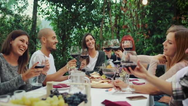 Friends together enjoy meal and red wine: up the glasses