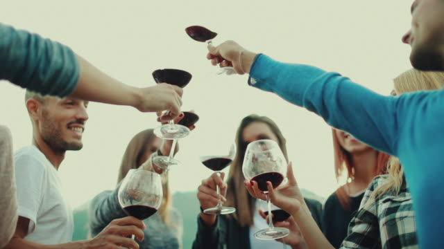friends together enjoy meal and red wine: up the glasses - celebratory toast stock videos & royalty-free footage