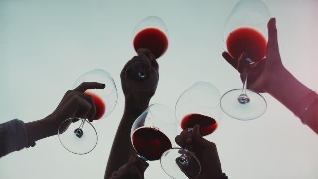friends together enjoy red wine: up the glasses - wine stock videos & royalty-free footage