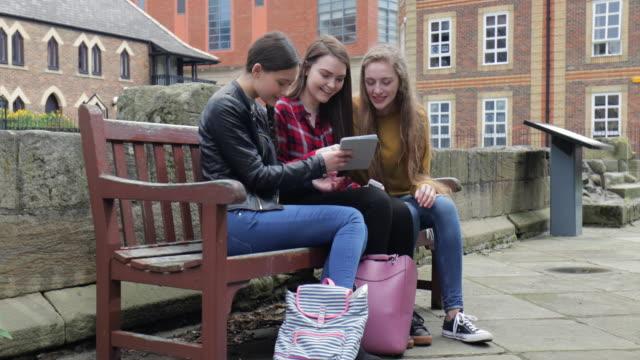 freunde mit digital-tablette auf parkbank - drei personen stock-videos und b-roll-filmmaterial