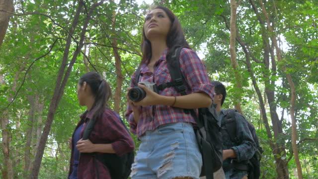 Vrienden wandelen in het bos. Aziatische mannen en vrouwen reizen buiten levensstijl in bos