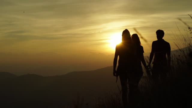 friends walking through tall grass at sunset overlooking lake and city below - women silhouette back lit stock videos & royalty-free footage
