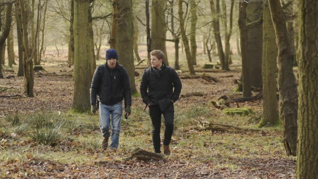 friends walking through the forest of london, england - wide shot - mid adult men stock videos & royalty-free footage