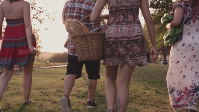 friends walking to their picnic location in the meadow - picnic basket stock videos & royalty-free footage