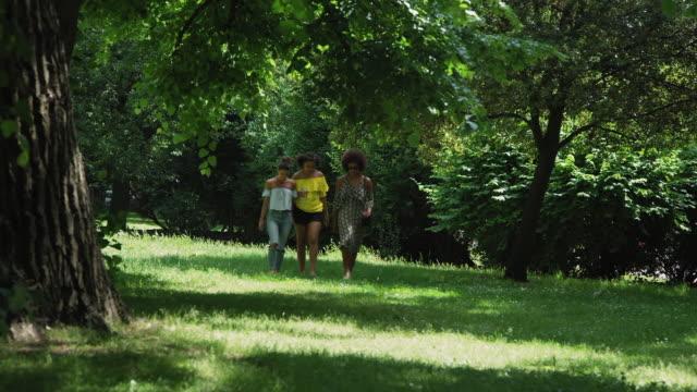 friends walking - gemeinsam gehen stock-videos und b-roll-filmmaterial