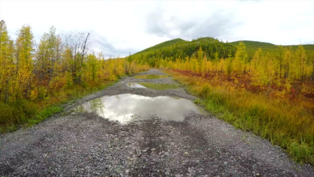 pov off-road 4x4 car driving on road - dirt road stock videos and b-roll footage