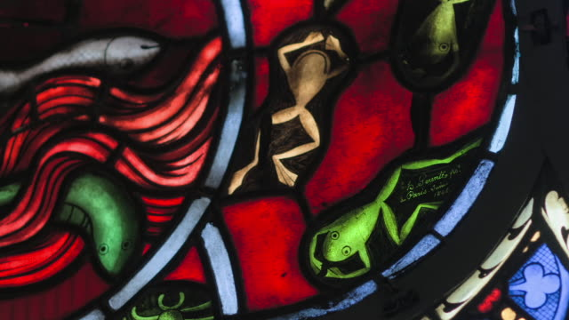frogs, fish and insects in stained glass of ely catherdral - anglican stock videos & royalty-free footage