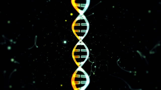 dna from a particle vortex - helix model stock videos & royalty-free footage