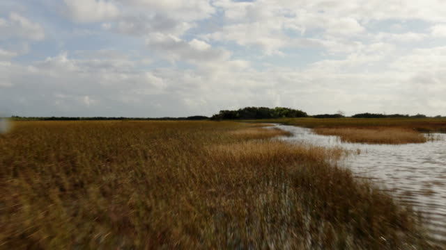 pov from airboat flying over sawgrass prairies and doing a  360-degree spin in the everglades, florida, usa - ökotourismus stock-videos und b-roll-filmmaterial