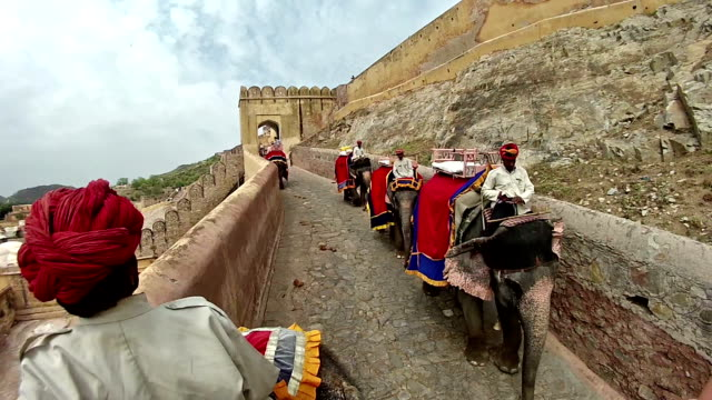 pov from back of elephant with mahout driving of other elephants walking up cobblestone road to ancient building fort. - tourism stock videos & royalty-free footage