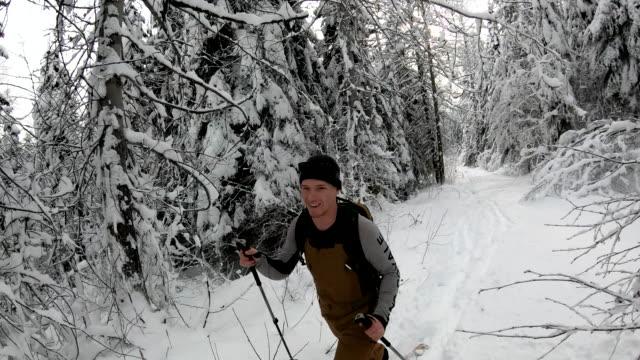 vídeos de stock e filmes b-roll de pov from backcountry skier to companion approaching through the forest - bastão de esqui