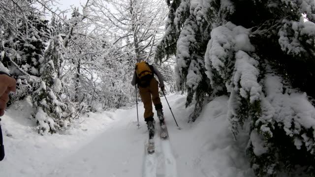 vídeos de stock e filmes b-roll de pov from backcountry skier to companion setting tracks through the forest - bastão de esqui