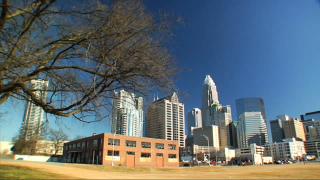 from bare tree to skyline of uptown charlotte w/ skyscrapers buildings bank of america corporate center streetlights cars moving in bg urban city... - bロール点の映像素材/bロール