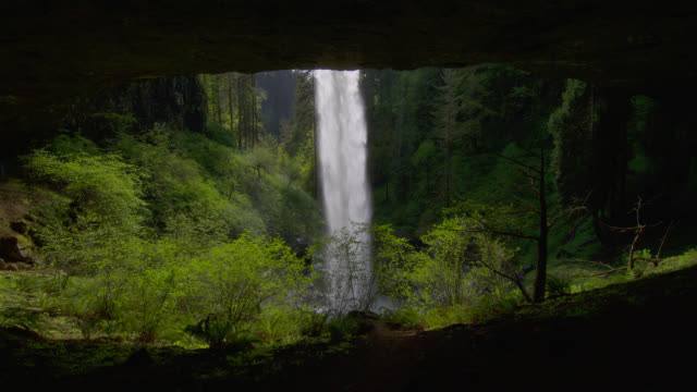 medium shot from behind waterfall in lush green forest - セーラム点の映像素材/bロール