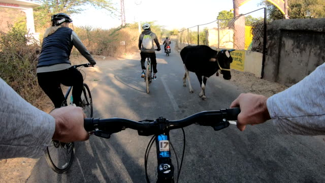 pov from bicyclist handlebars looking towards fellow bicyclists - cycling stock videos & royalty-free footage