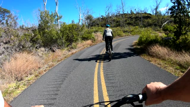 pov from bicyclist moving along rural road, forest - bare tree stock videos & royalty-free footage