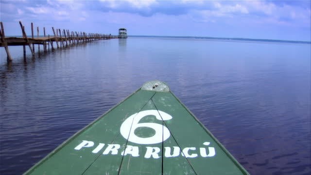 vídeos y material grabado en eventos de stock de pov from canoe named after the pirarucu fish as it drifts by pier on river in amazon / brazil - estado del amazonas brasil