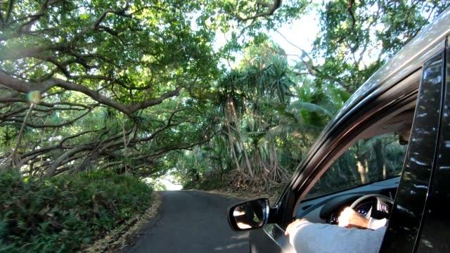 vídeos y material grabado en eventos de stock de pov del coche que se mueve a lo largo de la carretera rural, cerca del mar - isla grande de hawái islas de hawái
