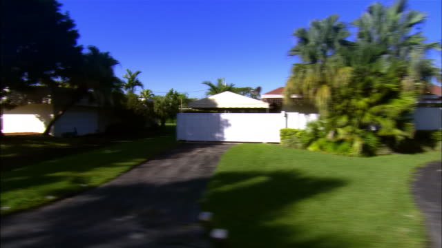 side pov from car riding through residential area, miami, florida, usa - fan palm tree stock videos & royalty-free footage