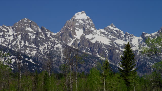 zoom out from close up to wide shot snowy grand teton and teton range with trees in foreground, grand teton national park, wyoming - parco nazionale del grand teton video stock e b–roll