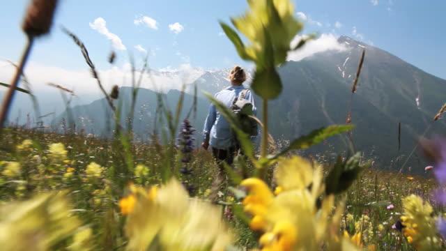 vidéos et rushes de pov from hikers feet following a middle aged woman through alpine meadow full of wildflowers - suivre activité avec mouvement