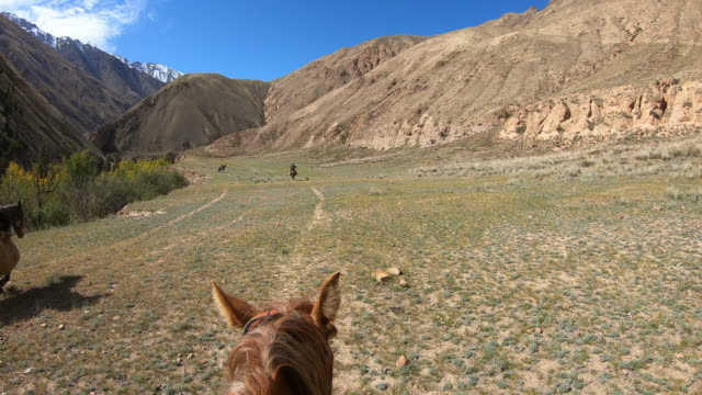 pov from horseback of man on horse in vast prairie field with mountains and river under puffy cloud filled blue sky and yellow autumn colored trees. - freizeitreiten stock-videos und b-roll-filmmaterial