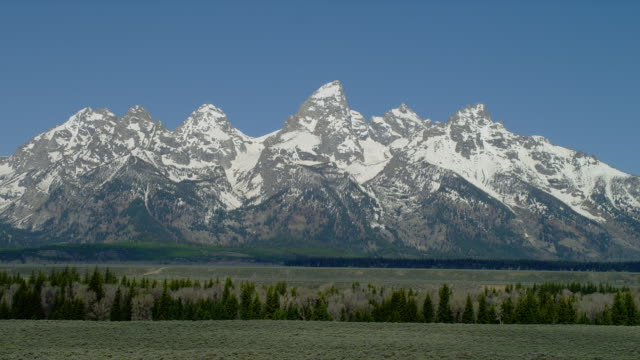 zoom out from long to wide shot snowy grand teton and teton range with green plain and trees in foreground, grand teton national park, wyoming - parco nazionale del grand teton video stock e b–roll