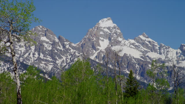 zoom out from medium to wide shot snowy grand teton and teton range with trees in foreground, grand teton national park, wyoming - grand teton stock-videos und b-roll-filmmaterial