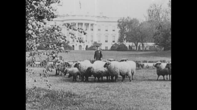 [From ScrippsHoward documentary about Woodrow Wilson] Title card At the White House / Pres Woodrow Wilson stands at window in White House office...