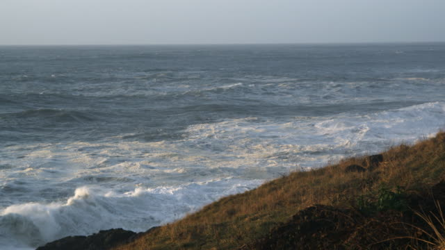 From the horizon white-capped waves roll to crash against the foot of a cliff